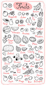 Set drawings of fruits for design menus, recipes and packages product. Vector Illustration