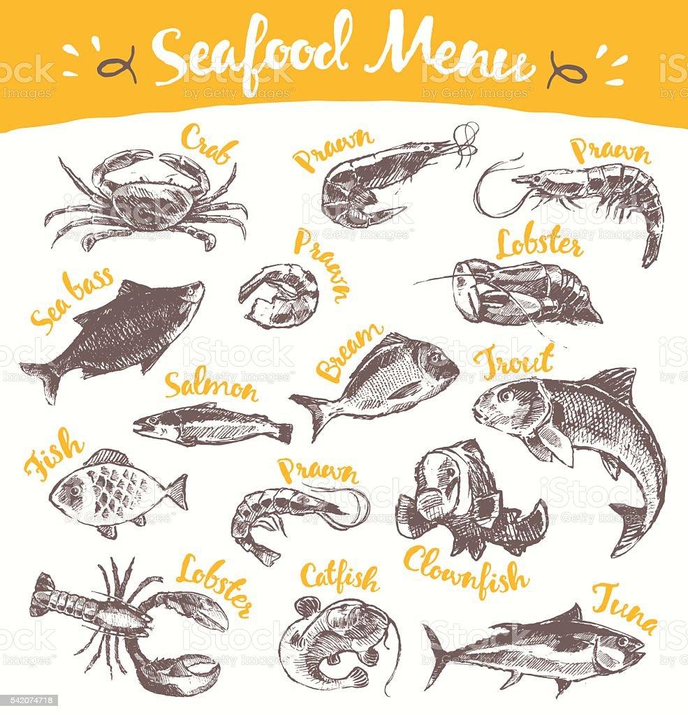 Set drawn seafood fish vector illustration sketch vector art illustration