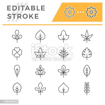 Set editable stroke line icons of leaf isolated on white. Vector illustration