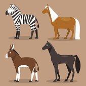 Set equines. Vector Illustration