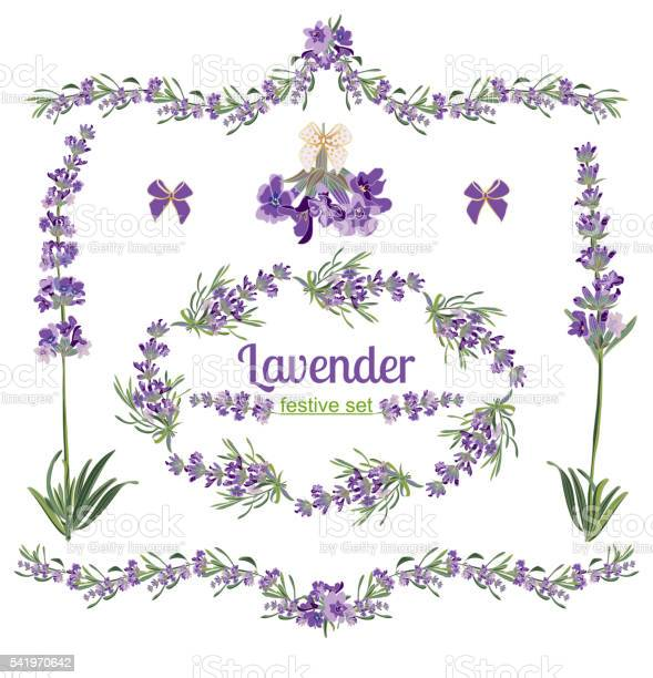 Set festive frames and elements with lavender flowers vector id541970642?b=1&k=6&m=541970642&s=612x612&h=m eeizem5lnbtmrcxqorojgexvpxg5ozpobtth jlyi=