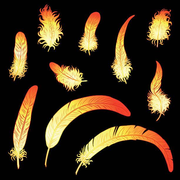Bекторная иллюстрация Яркая петушиные перья из набора или феникс