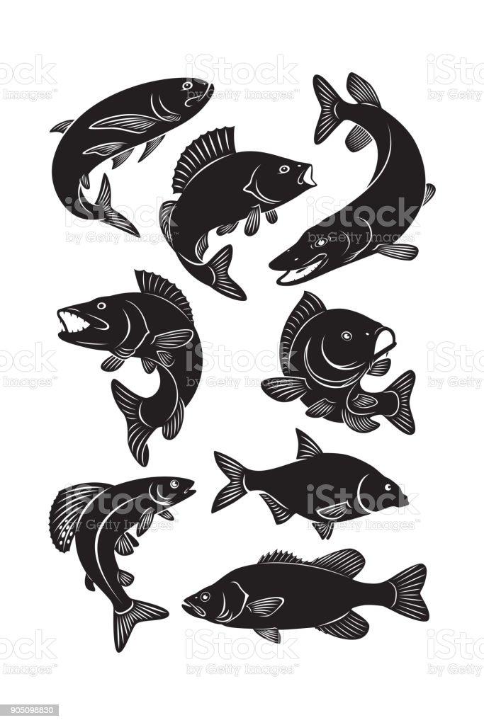set fish vector art illustration
