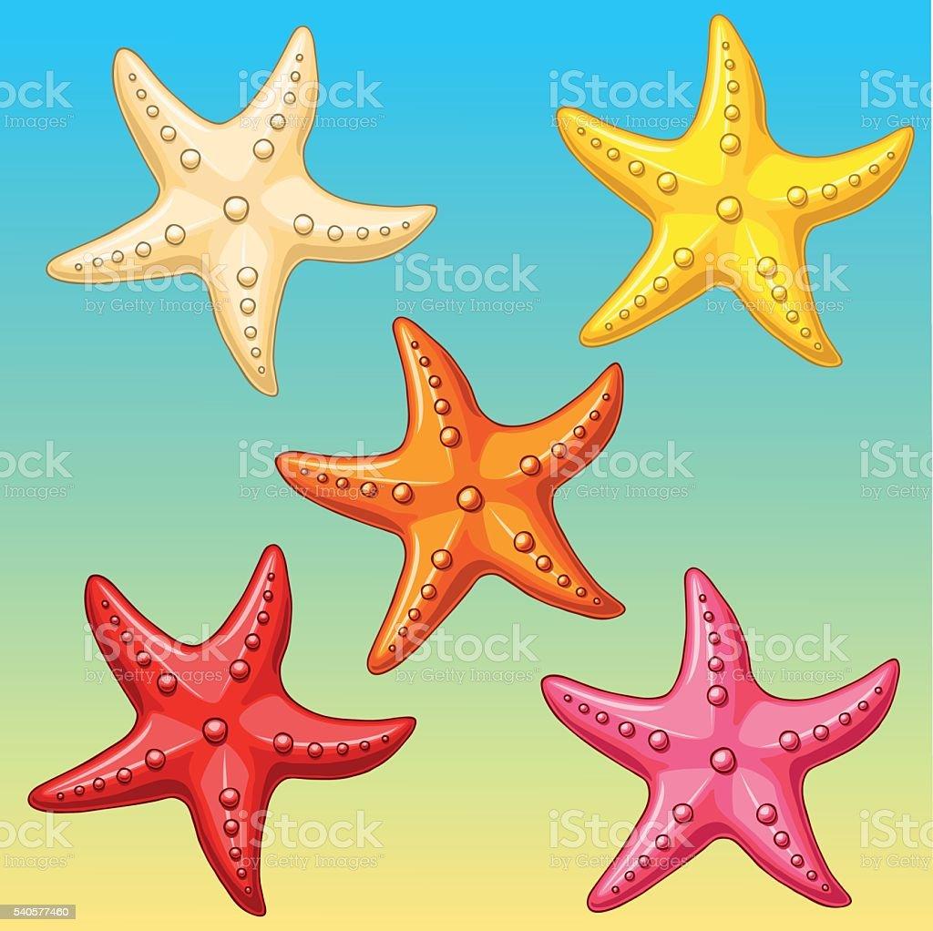 Набор пяти цвет морской звездой по желто-голубой векторная иллюстрация