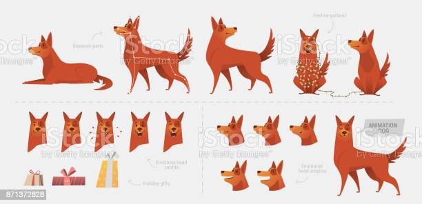 Set for creating a dog animation of emotions vector id871372828?b=1&k=6&m=871372828&s=612x612&h=8djkjdh1vvt6pnvr7jdd4sedfx3mqhylykslnfc4trc=