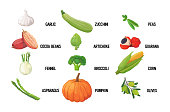 set fresh green vegetables tasty vegetarian healthy food concept horizontal vector illustration