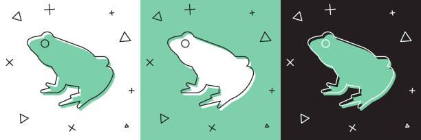 Set Frog icon isolated on white and green, black background. Animal symbol. Vector Set Frog icon isolated on white and green, black background. Animal symbol. Vector. amphibians stock illustrations