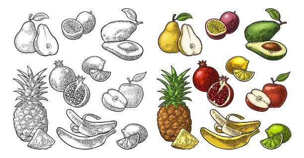 illustrazioni stock, clip art, cartoni animati e icone di tendenza di set fruits. pineapple, lime, banana, pomegranate, maracuya, avocado. - illustrazioni di passiflora