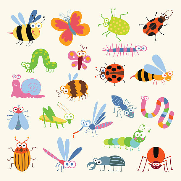 set funny insects - bugs stock illustrations, clip art, cartoons, & icons