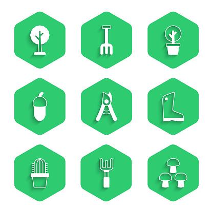 Set Gardening handmade scissors, rake, Mushroom, Rubber gloves, Cactus peyote pot, Acorn, Forest and icon. Vector