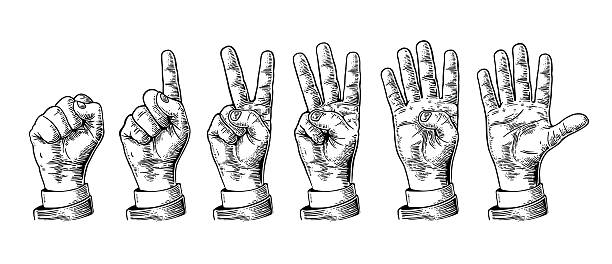 Set gestures hands counting from zero to five. Set of gestures of hands counting from zero to five. Male Hand sign. Vector vintage engraved illustration isolated on white background. engraved image stock illustrations