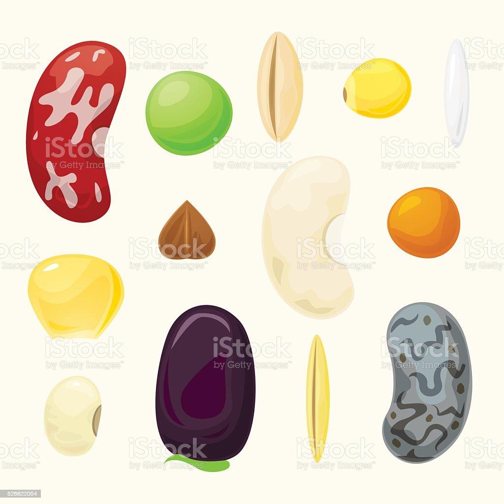 Set grains of different plants vector set vector art illustration