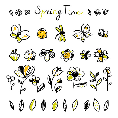 Set hand drawn floral, leaves and Insects elements