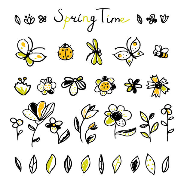 Set hand drawn floral, leaves and Insects elements Set hand drawn floral, leaves and Insects elements. Spring collection. Cute collection of design elements, isolated on white background. Doodle floral elements butterfly insect stock illustrations