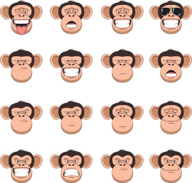 set head monkey - monkey stock illustrations