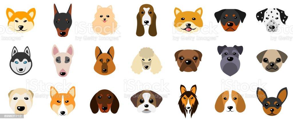 Set Heads of Dogs, Collection Different Breeds of Canines, Isolated on White Background – artystyczna grafika wektorowa