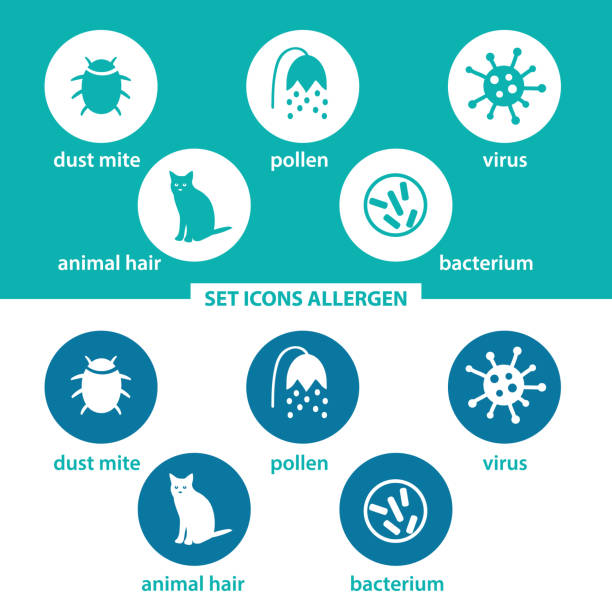 Set icons allergen. Group allergens in colored circles on dark and white background. Allergen - animal, dust mite, pollen, virus, bacterium. Set icons allergen. Group allergens in colored circles pollen stock illustrations