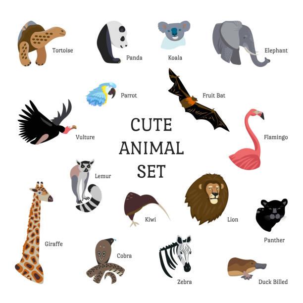 setzen sie ikonen zeichentrickstil von verschiedenen tieren. zeichen für ein anderes design mit text. - megabat stock-grafiken, -clipart, -cartoons und -symbole