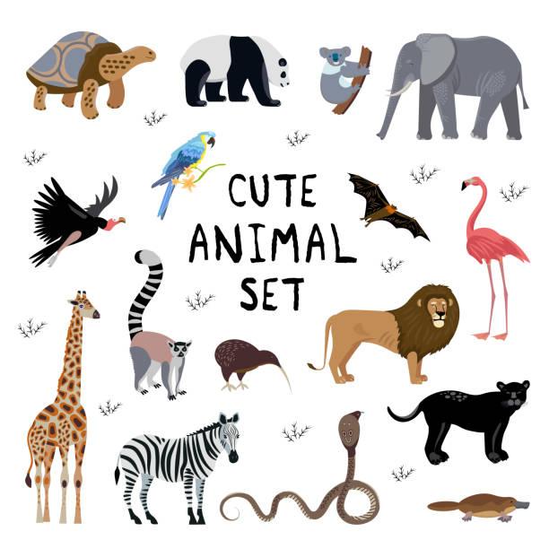 stellen sie icons cartoon-stil von verschiedenen tieren. - megabat stock-grafiken, -clipart, -cartoons und -symbole