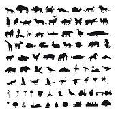 Set icons elements, vector illustration