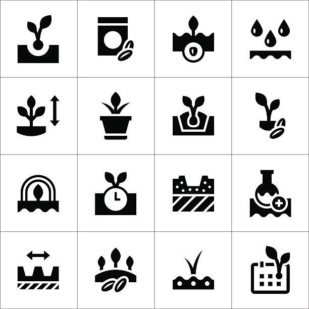 ilustraciones, imágenes clip art, dibujos animados e iconos de stock de conjunto de iconos de semillas y de esperanza - calendario de naturaleza