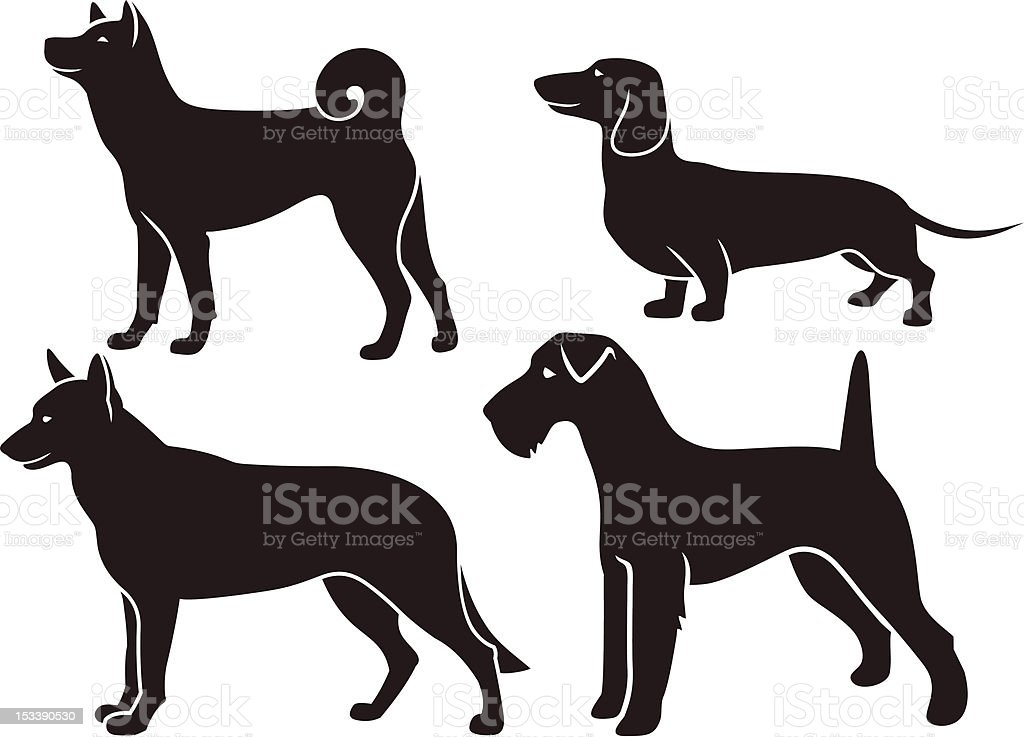 Set  images of dogs royalty-free stock vector art