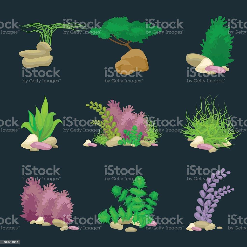 Impostare Isolato Colorata Coralli E Alghe Vettoriale Subacqueo