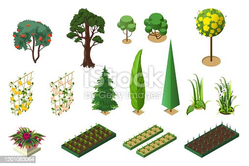 Set isometric of plants for garden. Trees, flower beds and vegetable beds. Isolated on white vector 3d illustration