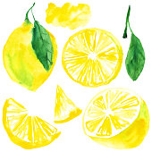 Watercolor illustration, lemon