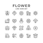 Set line icons of flower isolated on white. Vector illustration