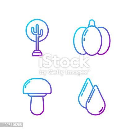 Set line Water drop, Mushroom, Tree and Pumpkin. Gradient color icons. Vector