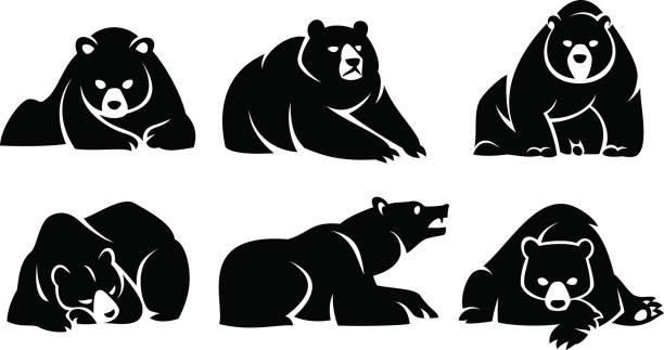 ilustrações, clipart, desenhos animados e ícones de conjunto ursos a mentir - urso