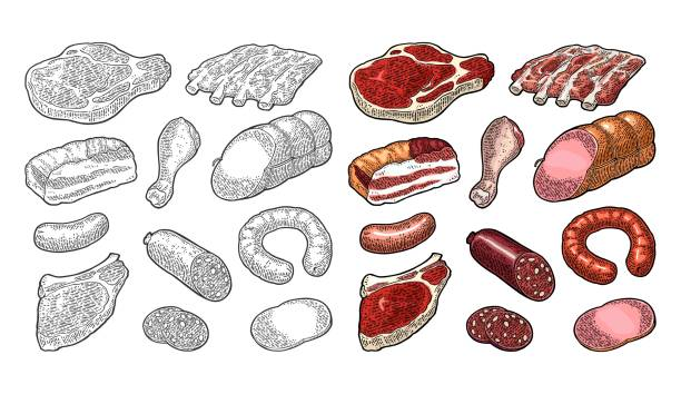 Set meat products. Vintage black vector engraving illustration. I vector art illustration