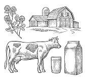 Set Milk farm. Cow head, clover, box carton package glass