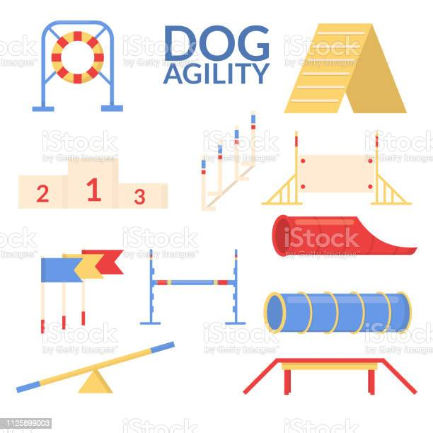 Set object of dog agility sport training equipment vector flat vector id1125899003?b=1&k=6&m=1125899003&s=612x612&h=1vqrimqhggllnyr6lmommdgkjvkmsh5fxcfm3te8tjs=