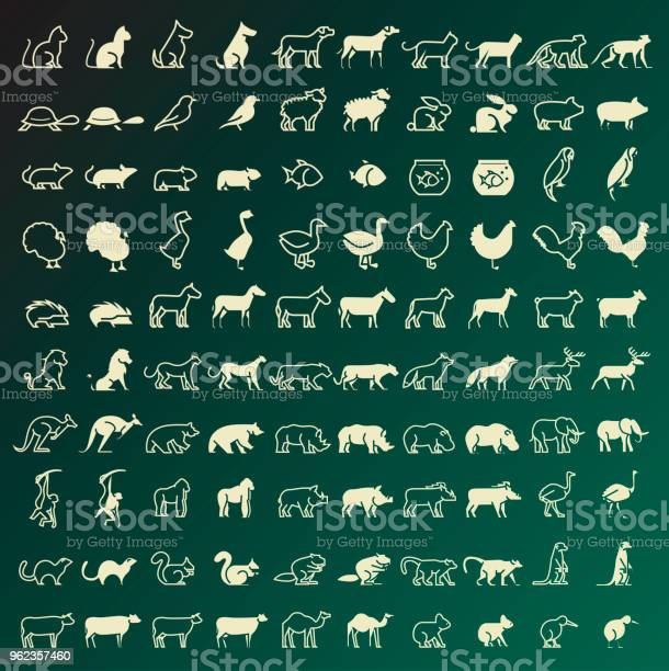 Set of 100 thin line and solid animals icons vector isolated elements vector id962357460?b=1&k=6&m=962357460&s=612x612&h=xpc hjnbjfkufvigzu1l6ohlhmtlpmkk1zbdzvfibs4=