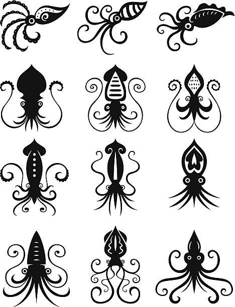 satz von 12 tintenfisch symbole - kalamar stock-grafiken, -clipart, -cartoons und -symbole