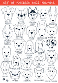 Set of 24 dogs different breeds handmade. Head dog