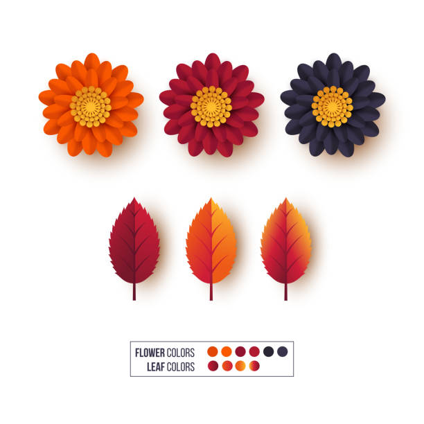 Set of 3d autumn leaves with flowers. Decorative elements for autumnal greeting cards, backgrounds. Orange, burgundy, violet colors. Isolated on white, vector illustration. Set of 3d autumn leaves with flowers. Decorative elements for autumnal greeting cards, backgrounds. Orange, burgundy, violet colors. Isolated on white. Vector illustration. autumn leaf color stock illustrations
