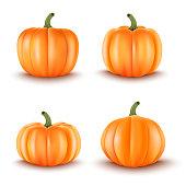 Set of 4 Realistic Pumpkins.Halloween decoration.Vector illustration