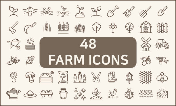 Set of 48 farm and agriculture Icons line style. Contains such Icons as plant, animal, garden, corn, gardening tools, organic, nature And Other Elements.  customize color, stroke width control , easy resize. corn crop stock illustrations
