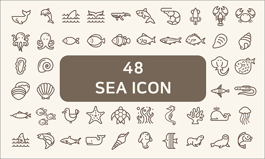 Set of 48 sea life and ocean Vector Icons.