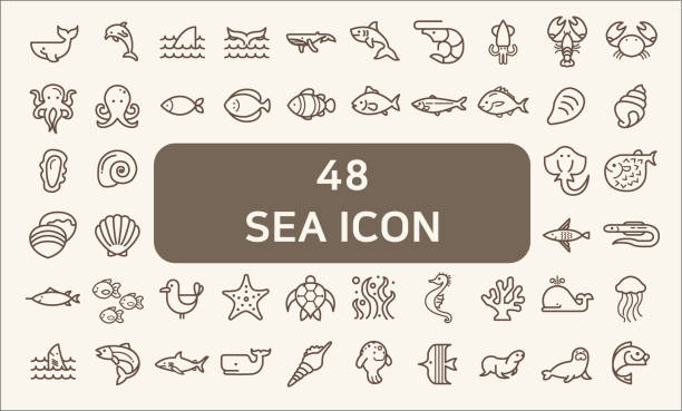 Set of 48 sea life and ocean Vector Icons. Contains such Icons as Nautical Creatures , sea food, sea, ocean, fish, coral, sea horse, seaweed, turtle And Other Elements.customize color, stroke width control , easy resize. living organism stock illustrations