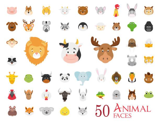 satz von 50 tier gesichter im cartoon-stil - tierkopf stock-grafiken, -clipart, -cartoons und -symbole