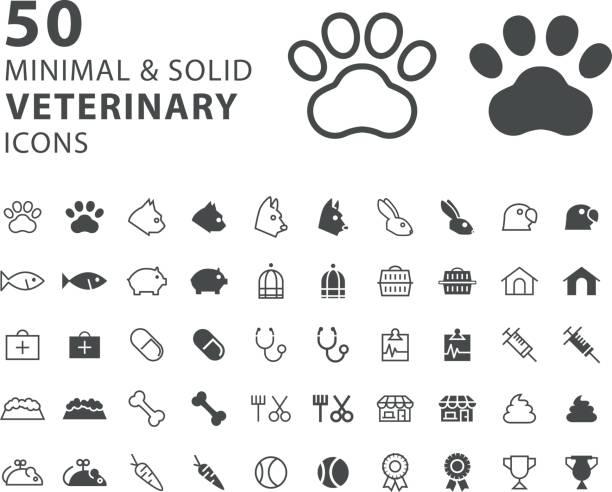 satz von 50 minimal und solide tierärztliche symbole auf weißem hintergrund - möbelfüße stock-grafiken, -clipart, -cartoons und -symbole