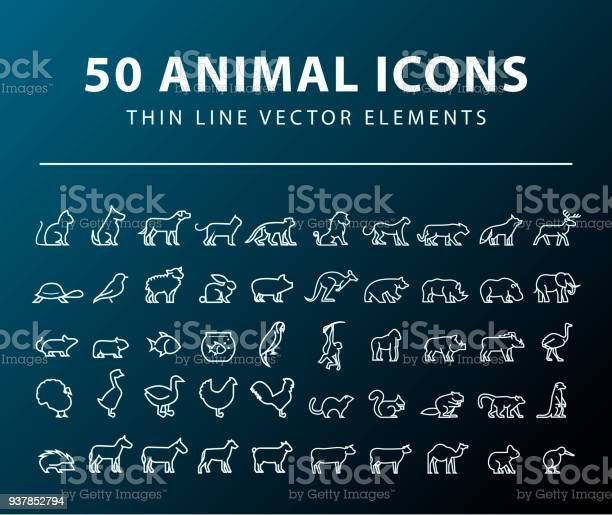 Set of 50 minimal animal icons on dark background isolated vector vector id937852794?b=1&k=6&m=937852794&s=612x612&h=ytipz zfqzyn2h6uhtyxaluriwablznoeo1dngrgafs=