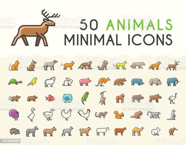 Set of 50 minimalistic solid line coloured animal icons isolated vector id970506936?b=1&k=6&m=970506936&s=612x612&h=eyzlyfszcfmwpbh1sjoyw7qqxaehmlui0symlwskvp0=