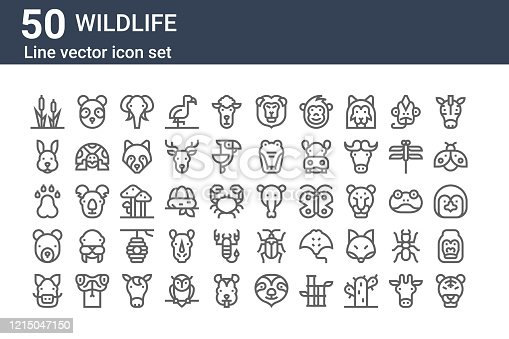 set of 50 wildlife icons. outline thin line icons such as tiger, boar, bear, pawprints, rabbit, panda