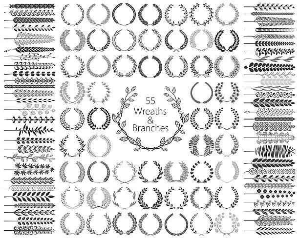 Set of 55 Wreaths and branches. Vector illustration. Set of 55 Wreaths and branches. Vector illustration. bay tree stock illustrations