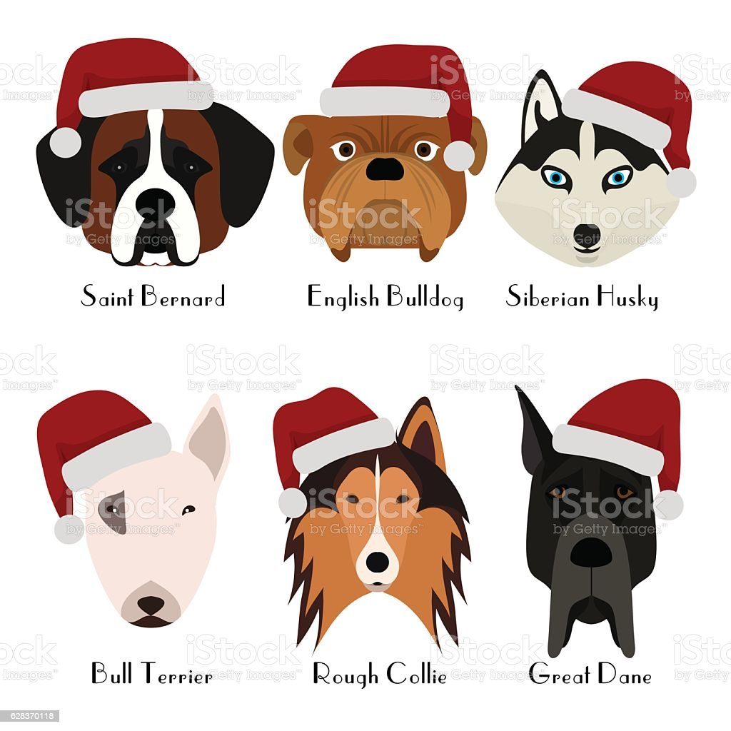 Set of 6 dog's head. Pets. Cute doggies vector art illustration